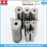 Le tungstène carbure cimenté meurt de la tete froide