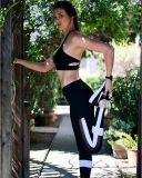 La aptitud hueco negra del deporte del orificio jadea las polainas de la yoga (3053)