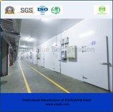 - Conservazione frigorifera di temperatura insufficiente di grado 15~-25/cella frigorifera per la memorizzazione dei prodotti congelati