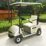 Chariot de golf électrique unique de Seater de la CE d'usine de la Chine mini (DG-C1)
