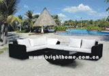 Садовая мебель / патио плетеной мебели (BL-802 & BL-802P)