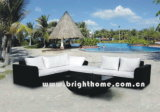 Mobili da giardino / Giardino Rattan Furniture Set (BL-802 & BL-802P)