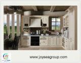 Armadio da cucina di legno europeo su ordinazione del nuovo modello di stile della Cina