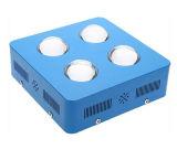 2개의 채널 통신로는 600W -1200W 온실 LED를 증가한다 플랜트 빛을 증가한다