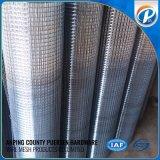 Rete metallica saldata bobina dell'acciaio inossidabile