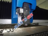 Tipo máquina para corte de metales del pórtico del laser de la fibra del CNC con alta calidad