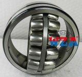 Cuscinetto a rullo sferico della gabbia di alta qualità E 22313 E