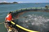Cage de flottement de poissons de cage de pêche de HDPE/PE en mer profonde pour la mer Aquaculature