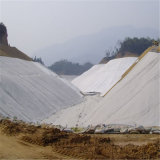 Geotessuto non tessuto del polipropilene fatto in Cina