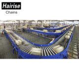 Hairise Sushi cadena flexible de la máquina de tren Transportadores