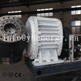 3 der Phasen-230V Wind-Turbine-Preis Wind-Turbine-des Generator-30kw für Bauernhof