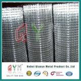 Treillis métallique soudé enduit par PVC galvanisé de fer de treillis métallique