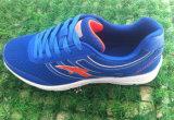 شبكة و [بو] مادّيّ علبيّة رياضات أحذية [رونّينغ شو] حذاء