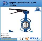 Fabricante Dn350 Válvula Borboleta Excêntrico Duplo Flangeado