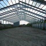Edificio del taller de la estructura de acero de la alta subida y del palmo grande