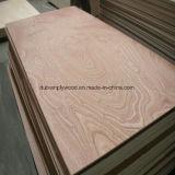 Precio competitivo de la madera contrachapada Bintangor Comercial