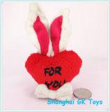 Neuheit-Förderung-Geschenk-Plüsch-Valentinsgruß Keychain
