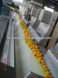 5t/H Natural Orange Juice Production Line