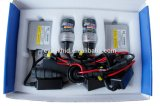 Kit de xenón HID Iluminación D2 D2R 12V 35W CANBUS HID Xenon con buena gas del xenón 6000k para Philips lámpara HID