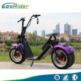 EEC/Ce/RoHS 증명서 1200W 25km/H 2 바퀴 전기 스쿠터 Ebike 성인을%s 가장 새로운 Ecorider 기동성 스쿠터