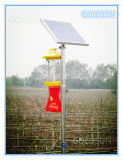 Lampada solare dell'assassino dell'insetto di agricoltura in azienda agricola, giardino, frutteto, foresta
