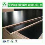 madera contrachapada Shuttering impermeable de la alta calidad WBP de 18m m