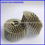 1-1 / 4 '' Coil Roofing Nail for Canada Market