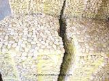 la pietra Polished di alta qualità di 30X30cm copre di tegoli il commercio all'ingrosso della Cina