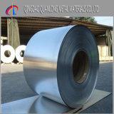 La calidad primera laminó la bobina del acero inoxidable