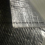 Ceramic refrattario Fiber Cloth/Aluminosilicate Cloth per Foundry e Furnace