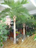 Palmier en coco artificiel à l'extérieur ou à l'intérieur Gu54350033623613447kjab