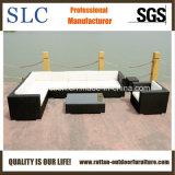 Im Freienmöbel-Sofa-Möbel-Luxuxsofa-Entwurf (SC-B6017)