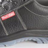 Zapatos de funcionamiento de las mujeres de los zapatos de seguridad de Palmprint de la mano
