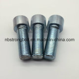 Vis à tête à six pans creux Hexagaon Socket Boulons DIN912 grade 8.8 avec blanc zingué Cr3 + M24X70 FT