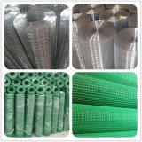 Panneaux galvanisés de maillage de soudure de fil (1M*25M)