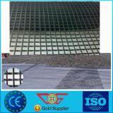 Maille de fibre de basalte/fibre de verre Geogrid