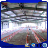 Camera di pollo d'acciaio agricola delle costruzioni con la struttura d'acciaio chiara