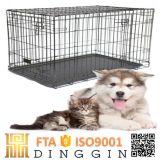 Fornitori poco costosi all'ingrosso dei prodotti del cane