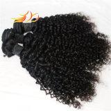 卸売の100%年のRemyの毛のジェリーのカールのベトナムの毛の拡張