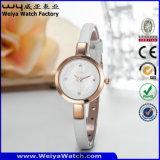Wristwatches повелительниц кварца кожаный планки вахты ODM вскользь (Wy-074E)