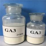 Продажа Gibberellin горячей воды для повышения темпов роста плода