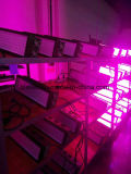 El aluminio más eficiente LED crece 210W ligero China
