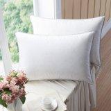 Erstklassige Gans Pillows unten mit der gemischten Feder, Baumwolshell 100% mit ultra neuer Behandlung