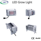 600W LED IP65 Luz para crescer com marcação RoHS