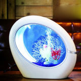 Lâmpada de mesa acrílica Desktop do tanque de peixes da sala de visitas mini