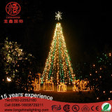Luz grande modificada para requisitos particulares del árbol de navidad de la guirnalda LED 3D de los 3m/6m/10m para la alameda de compras