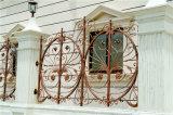 Européenne de Sécurité décoratifs délicat de clôtures de jardin résidentiel