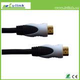 Boîtier en métal Mâle Câble HDMI M vers M 19broche