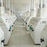 precio de fábrica de máquina de la molinería del trigo 80t