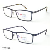 Het nieuwe Optische Frame van het Titanium van het Metaal (TT 6264)